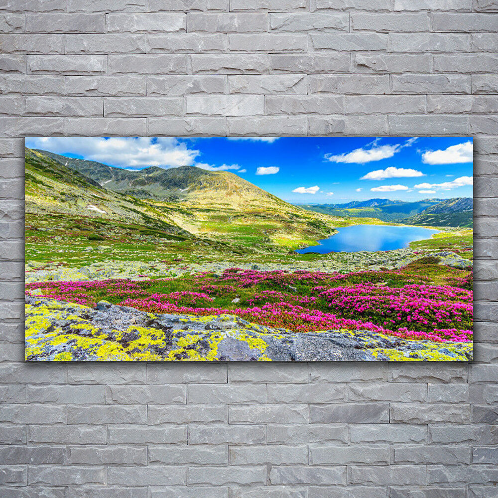 Acrylic print Wall art 120x60 Image Picture Mountain Bay Meadow Nature