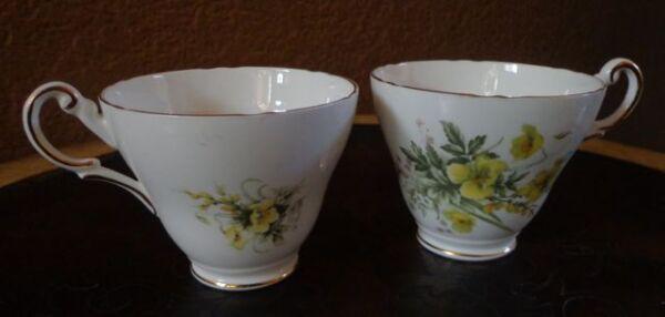 Entusiasta Regency Porcelana Fina Taza Té Juego Inglés Patrón Floral Conjunto De 2
