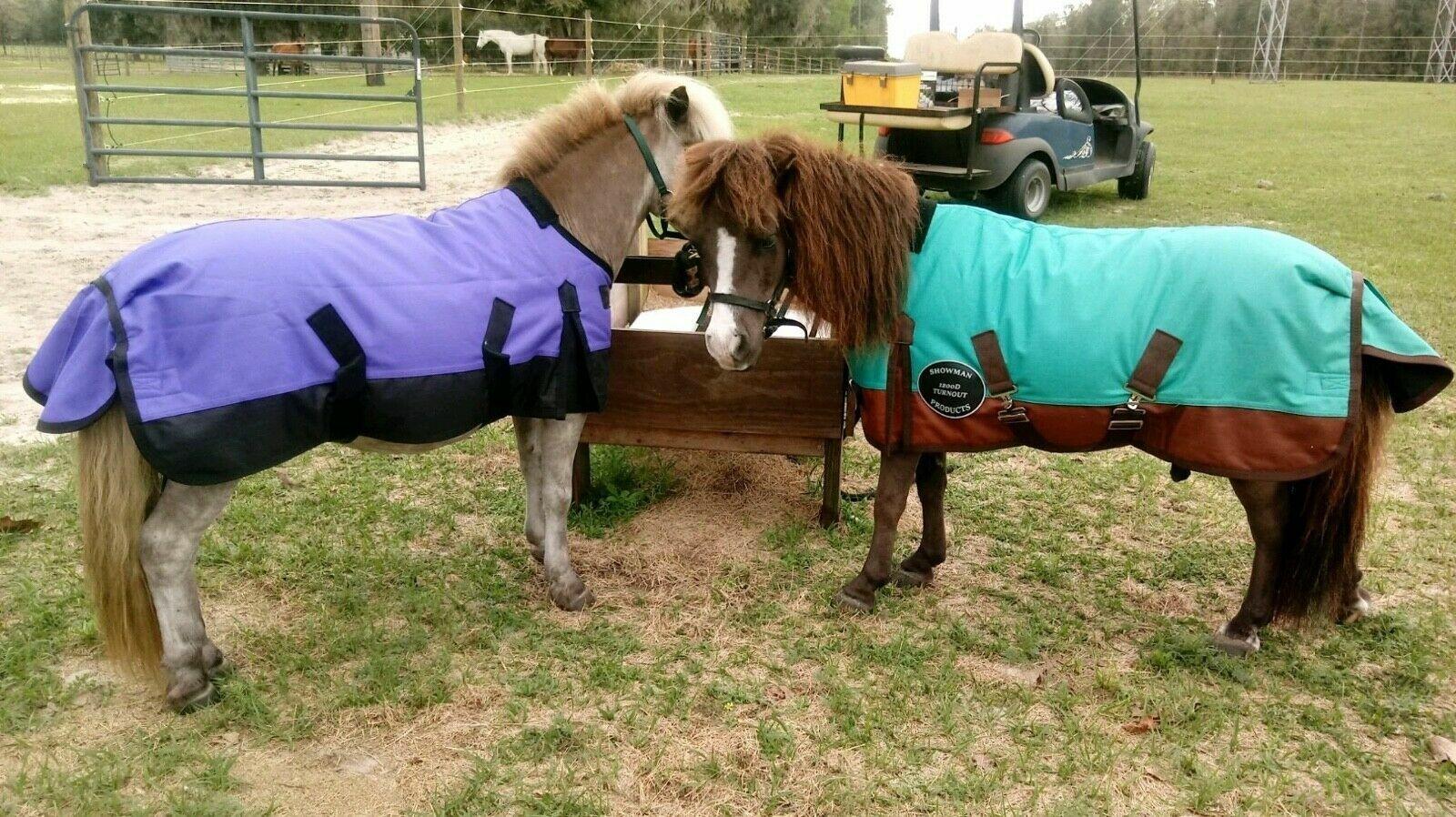 56 60 62 Winter WATERPROOF Turnout BLANKET Pony Smtutti cavallo blu viola TEAL