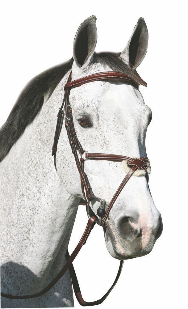 HDR Henri de Rivel Pro Plain Figure 8 Padded Bridle -Brown- Cob, Horse, Oversize