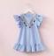Toddler-Kids-Baby-Girls-Dress-Princess-Party-Clothes-Sleeveless-TutuDress-HOT thumbnail 13