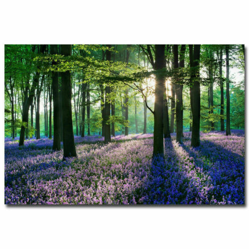 1294D New Trees and Flowers Forest Nature Green-Print Art Silk Poster