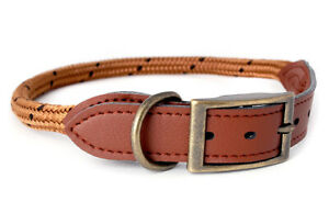 Douglas-Paquette-MOUNTAIN-ROPE-Coffee-Braided-Nylon-amp-Leather-Dog-Collar