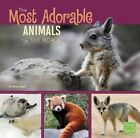 The Most Adorable Animals in the World by Tammy Gagne (Paperback, 2016)