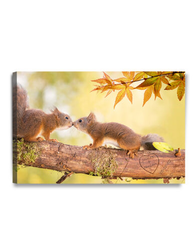 """DecorArts /""""Two Loving Squirrels/""""Personalized canvas prints Artwork ready to hang"""