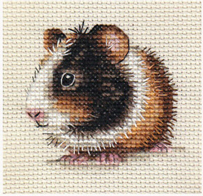 Tri-colour GUINEA PIG, CAVY ~ Full counted cross stitch kit