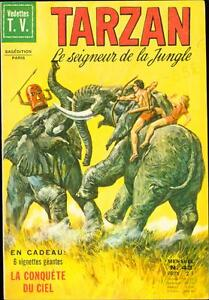 TARZAN LE SIGNEUR DE LA JUNGLE #43 1973-BURROUGHS-FRENCH-HOGARTH ART FINE