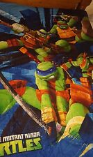 Teenage Mutant Ninja Turtle Complete Twin Bed Set, Rug and Picture, Curtains