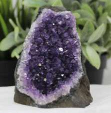 Stunning VERY LARGE Amethyst Cut Base Cluster Crystal Quartz Geode 1.1 - 1.8 lb