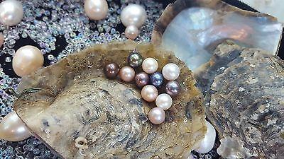 15PCS Rainbow Oyster Pearls Inside Oval 7-8mm Pearls Random Freshwater Wish Love