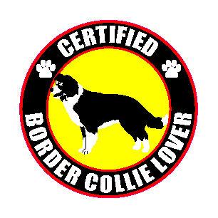 """CERTIFIED BORDER COLLIE LOVER 4/"""" STICKER"""