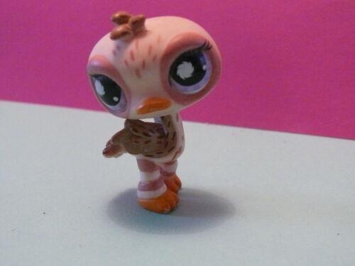 pink ostrich bird postcard N° 945 petshop oiseau autruche rose decoree
