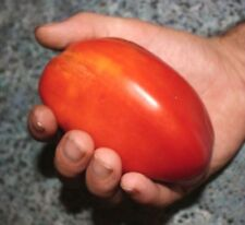 Hog Heart Tomato - HEIRLOOM  - GREAT FLAVOR! 20 SEEDS! ! See our store!