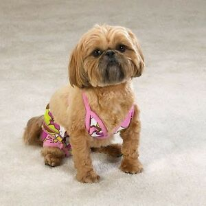 Casual-Canine-Maui-Flowers-Bathing-Suit-Bikini-for-Dogs
