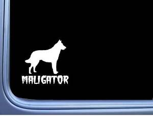 Maligator-Belgian-Malinois-M350-6-inch-Sticker-Decal-dog-caution-k9