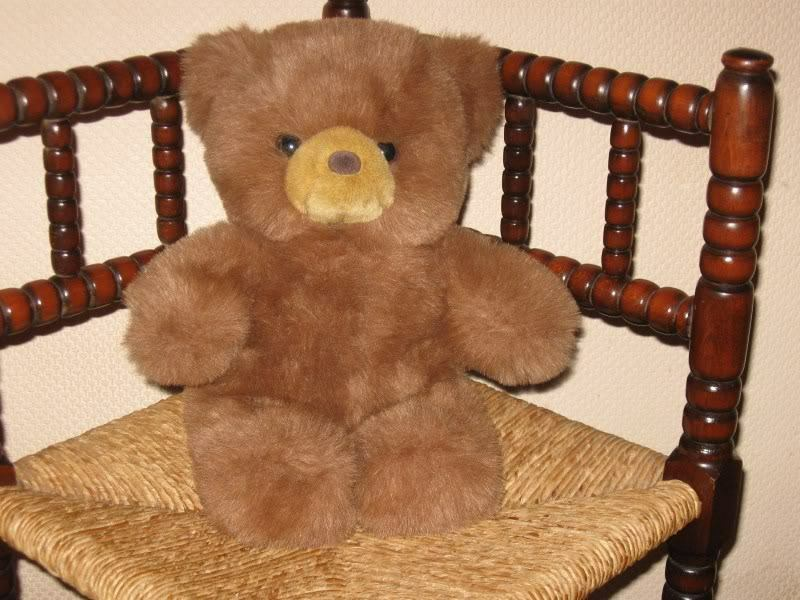 L Dake & Son Holland Braun 15 inch Teddy Bear