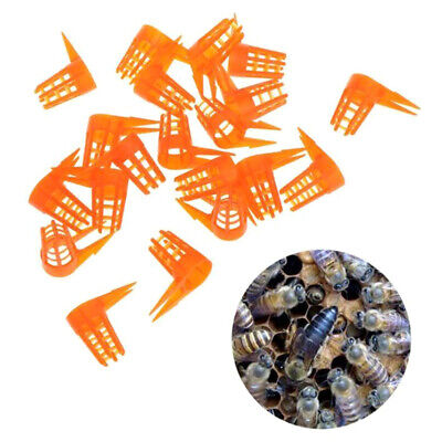 20x//Set Bee Queen Cell Cover Beekeeping Tool Beekeeper Plastic Cage Protectiv JG