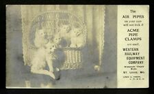 Cats Real Photo Ad Western Railway Equipment Co 1906