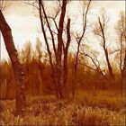 Branches by Northwoods Improvisers (CD, May-2001, Entropy Stereo)
