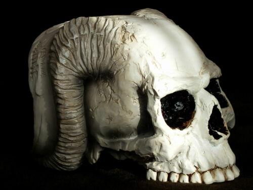 akt,Angel of Hades,Skull,Angel,17x13cm,The Vault Alchemy,schädel,engel,totenkopf