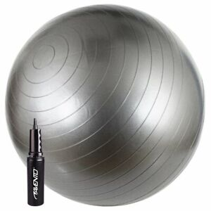 Avento-Fitness-Ball-with-Pump-65cm-Silver-Gym-Fit-Yoga-Core-Exercise-Equipment