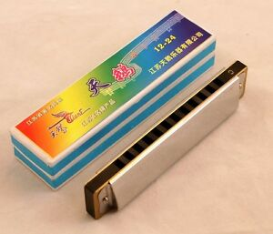 New-Swan-Diatonic-Harmonica-12-Hole-Key-of-C-Harmonica-Best-on-the-Web