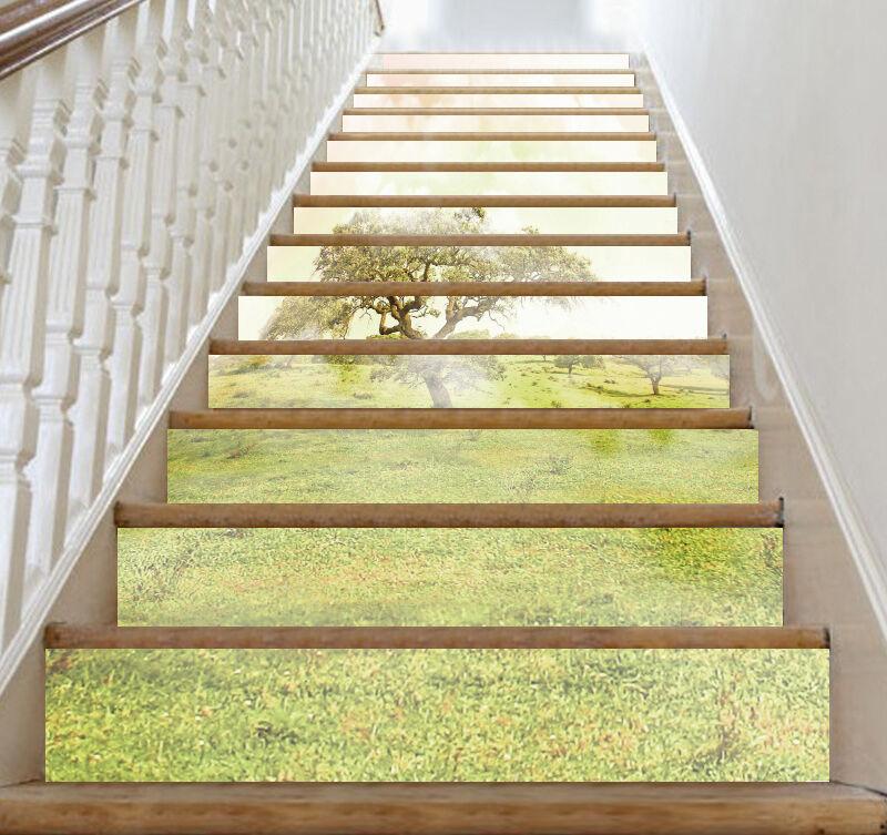 3D Wiese 365 Stair Risers Dekoration Fototapete Vinyl Aufkleber Tapete DE