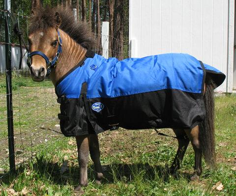 Miniature Horse, Miniature Donkey Waterproof Turnout Blanket w Gussets & Lined