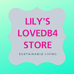 Lily s Clothing Store and More