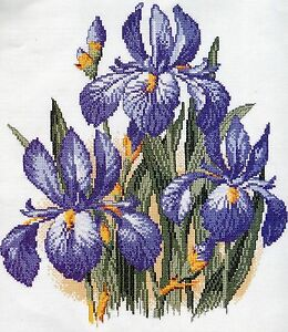 stickpackung stickbild sticken 39 x 43 cm blaue iris blume blumen flower natur ebay. Black Bedroom Furniture Sets. Home Design Ideas