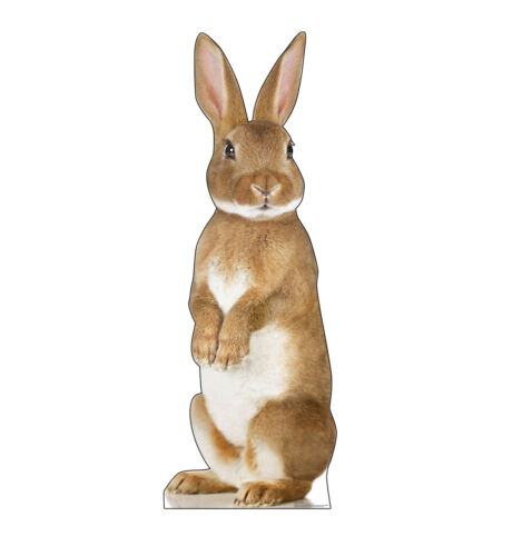 Bunny Rabbit Easter Lifesize Party Decoration Cardboard Cutout Standee Poster