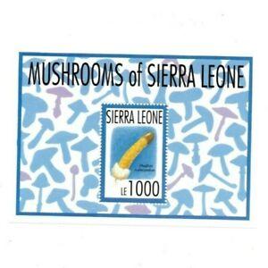 VINTAGE-CLASSICS-Sierra-Leone-1626-Mushrooms-Souvenir-Sheet-MNH