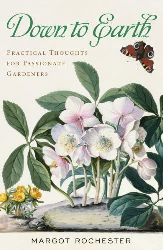 Rochester, Margot Down To Earth Practical Thoughts For Pa - $6.15