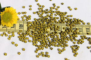 8-0-Old-Time-Glass-French-Yellow-w-4-Black-Stripes-Seed-Beads-Crafts-1oz