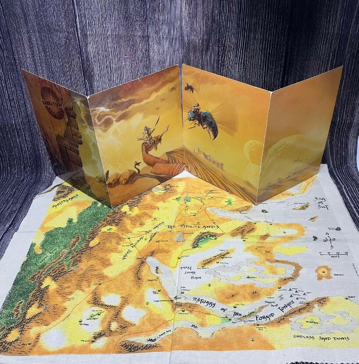 Dungeons Dragons D&D Dark Sun Game Masters Screen With Cloth World Map 2E
