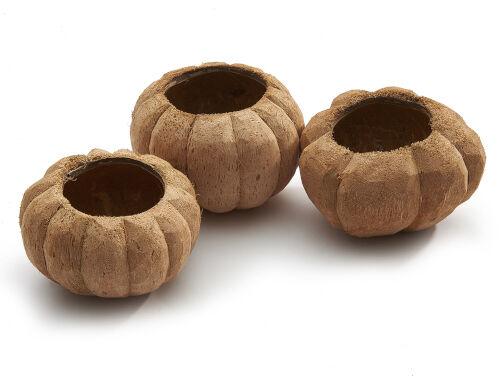 Coco Pumpkin ca.16cm natur 1 Stück aus echter Kokosnuss Schale Becher Vase Deko