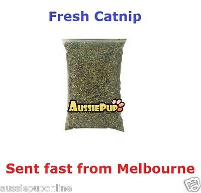 Natural Grown Catnip Cats Kitten Toy stimulator fun playful cat products puss