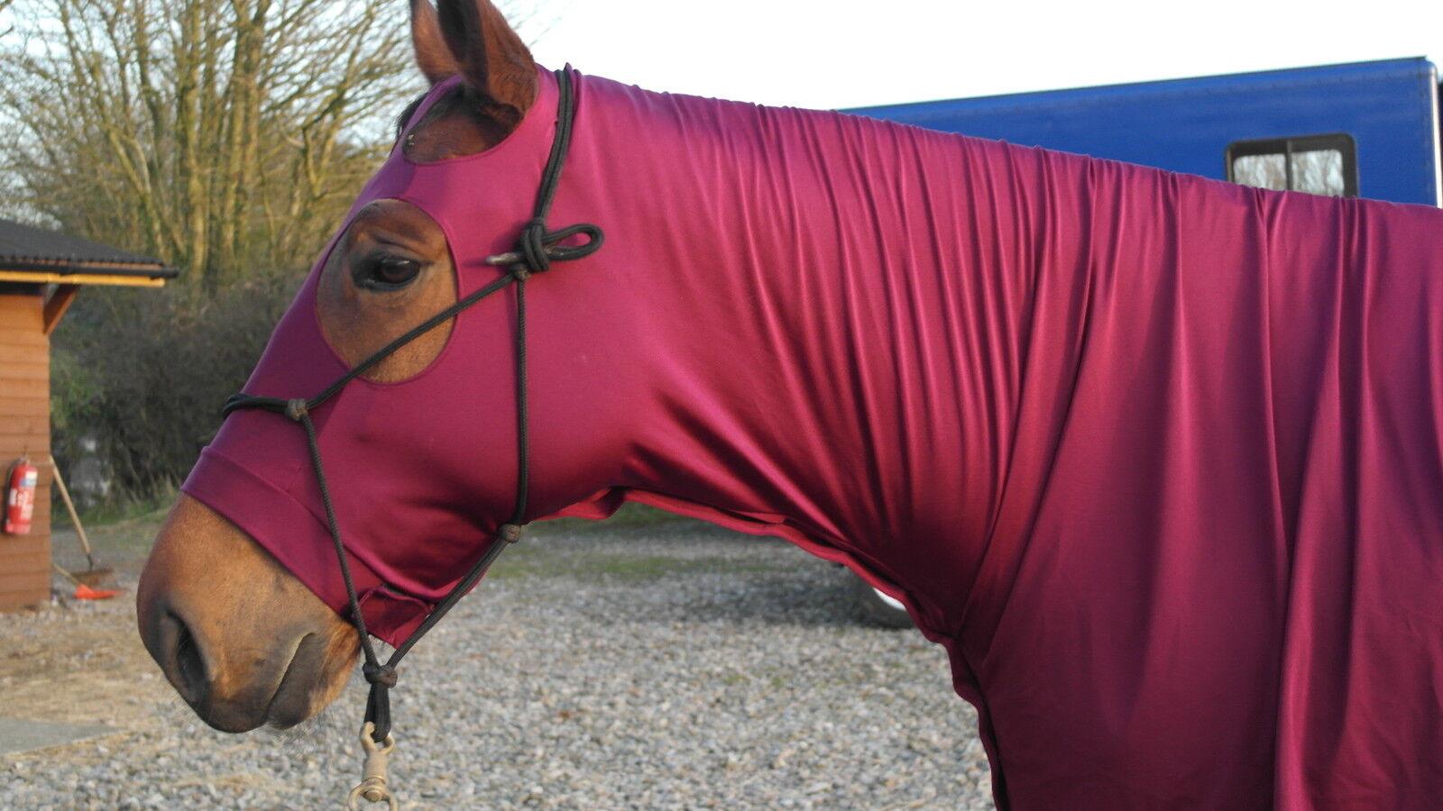 Stretch horse hood in  BURGUNDY MAROON