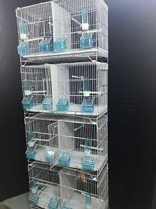 3 ensembles de 4 cages d'élevage de zèbres double canari Budgies (ensemble)