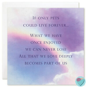 Dog Sympathy Card in Memory of Condolences for Your Loss from Over The Rainbow Bridge