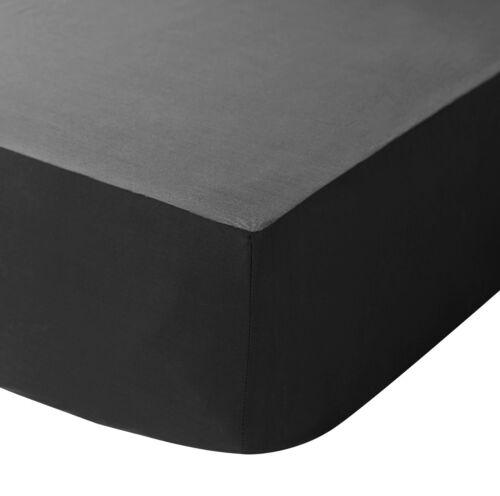 Catherine Lansfield Repassage Facile Uni Percale Plat//Ajusté Valance Sheet Black