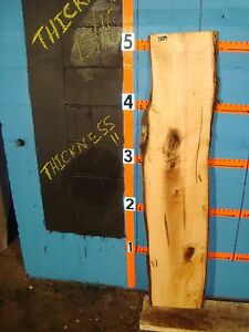 "#7559, Tiger Maple Live Edge Slab lumber wood L 61"" W13 3/4"" T15/16"""