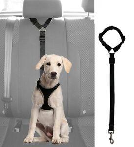 Dog Seat Belt Harness >> Pet Dog Car Safety Seat Belt Harness Restraint Lead Travel Collar