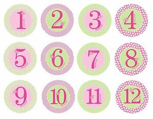 Pearhead First Year Baby Monthly Milestone Stickers, Baby Girl Photo Props, Pink