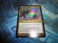 Forbidden Orchard //// EX //// Champions of Kamigawa //// engl //// Magic the Gathering