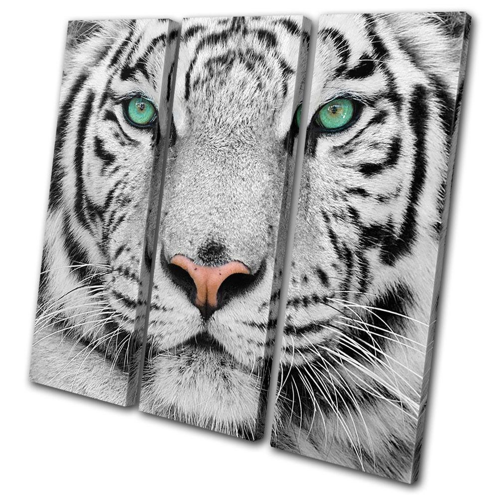 Animals Siberian Tiger Eye TREBLE LONA pa rojo    arte Foto impresion fb05ce
