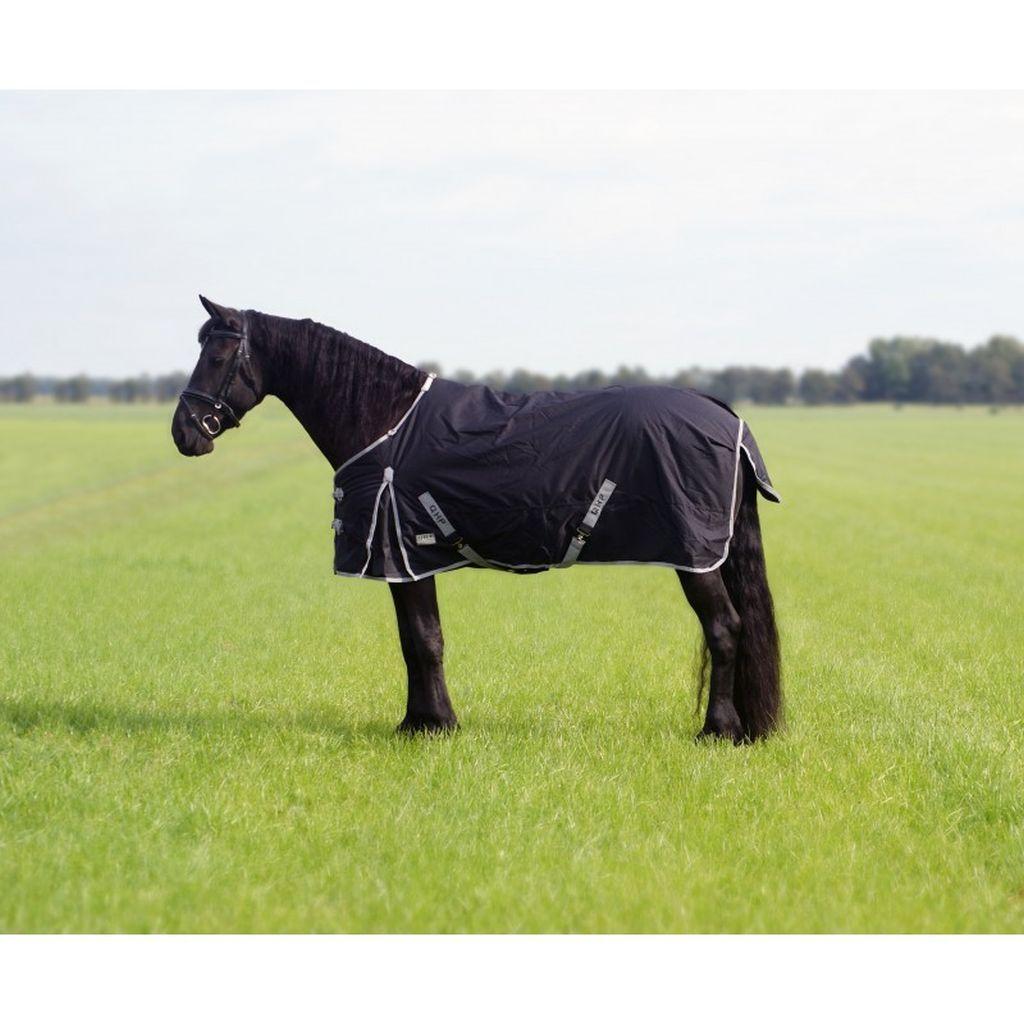 Qhp outdoordecke tournout XL 600d 300g relleno f Friesen y großrahmige caballos