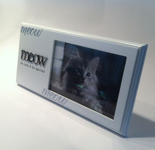 "Great Quality Kitten Pet Photo Frame /""Meow So Cute /& So Spoiled/"" Cat"