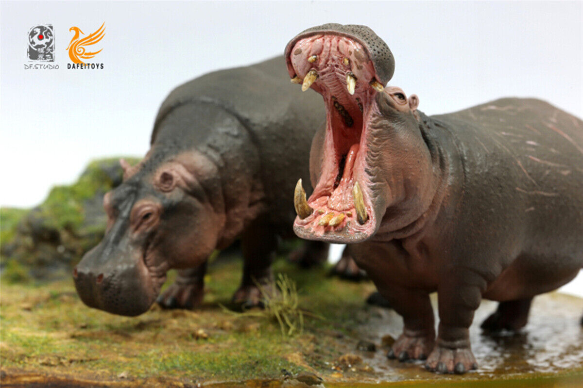African hippopotame Hippo Figure Animaux Sauvages Modèle GK collector Decor eau
