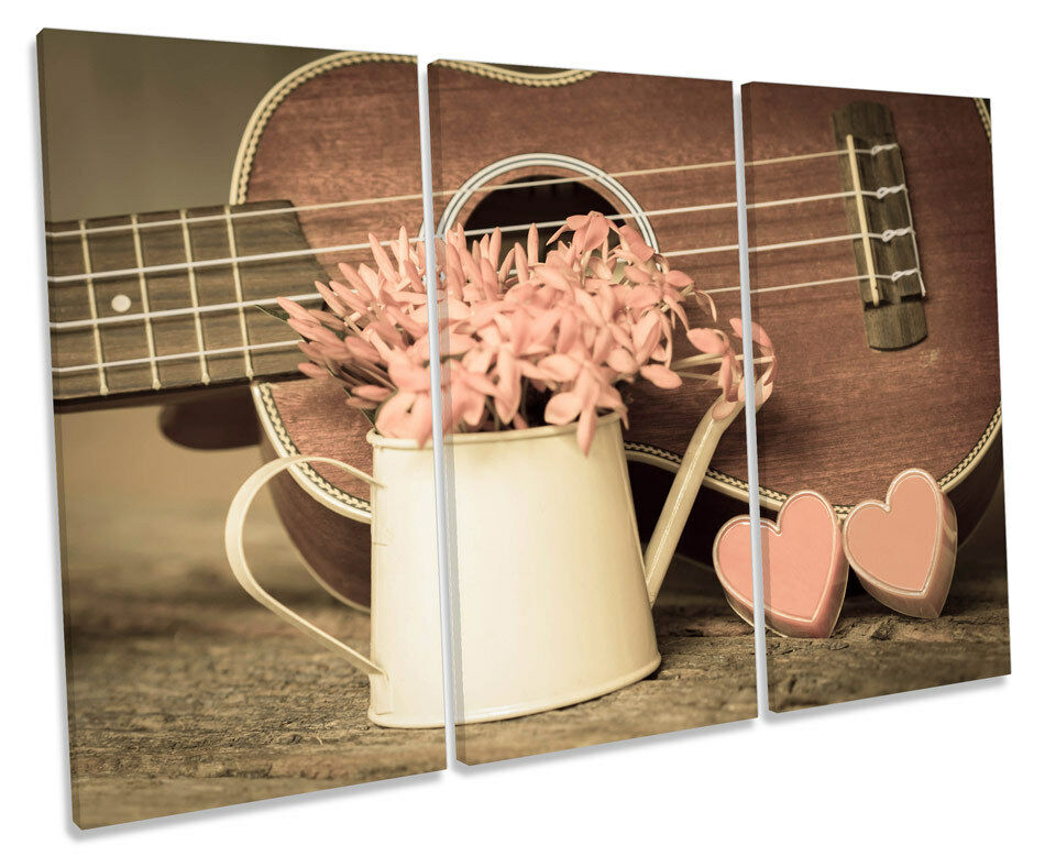 Hearts Guitar Floral TREBLE toile WALL ART Box Framed Print